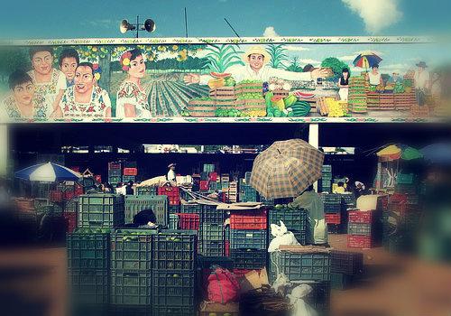 Mercado municipal de Oxkutzcab
